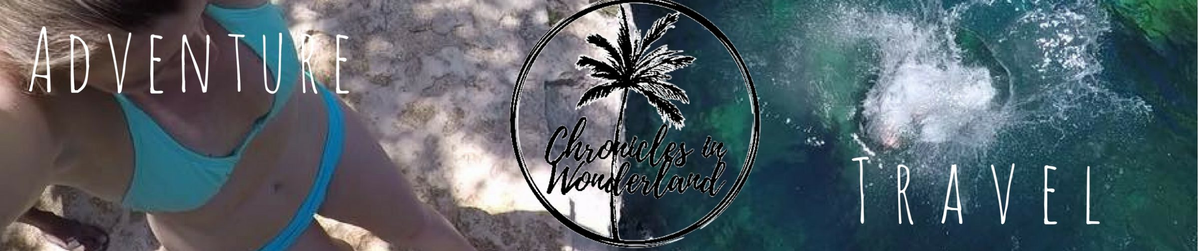 Chronicles In Wonderland